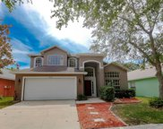18929 Twinberry Drive, Tampa image