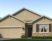 17224 Harvest Moon Way, Bradenton image