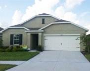 16432 Treasure Point Drive, Wimauma image