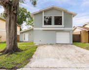 4826 Grove Point Drive, Tampa image
