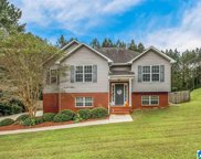 703 Isbell Road, Odenville image
