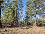 2011 Pine Canyon, Happy Jack image