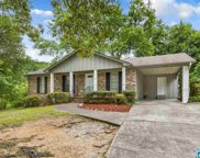 6592 Old Springville Rd, Pinson image