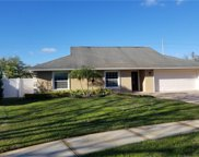 3428 Cullendale Drive, Tampa image