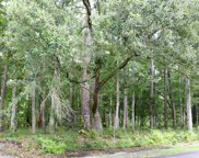 Lot 3 Tuckers Rd., Pawleys Island image