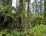Tbd Southwind Trail, Fort Pierce image