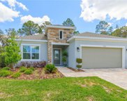 11406 Tanner Ridge Place, Riverview image