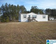120 Abingdon Trace, Odenville image