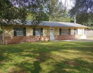 578 Blue Springs Court, Orange City image