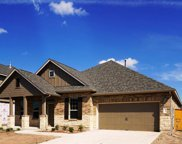 12709 Twisted Root Dr, Manchaca image