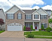 13683 Evergreen Glen, St Louis image