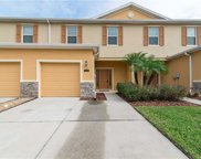 13907 River Willow Place, Tampa image