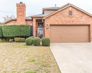 3978 Sword Dancer Way, Grand Prairie image