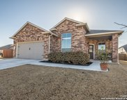 480 Willow Arch St, New Braunfels image
