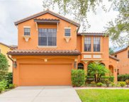 20307 Heritage Point Dr, Tampa image