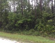 1760 Guava Lane, Bunnell image