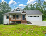 893 Country Road, Warrior image