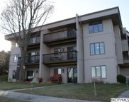 71 Briarstone Ct Unit B-4, Mason City image