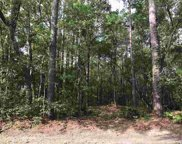 Lot 11 Collins Meadow Dr., Georgetown image