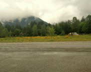 1295 State Route 530, Darrington image
