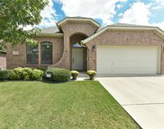 11528 Round Leaf Drive, Fort Worth image