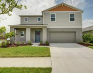 12829 Scarlet Star Drive, Riverview image