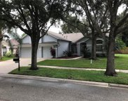 8614 Herons Cove Place, Tampa image
