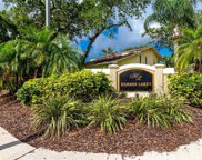 101 Winding Willow Drive, Palm Harbor image