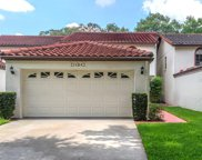 11314 Linarbor Place, Temple Terrace image