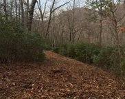 Panther Mountain Road, Travelers Rest image