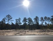 5169 Barcroft Lake Drive, Leland image