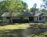 6815 CO RD 119, Bryceville image