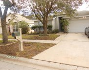 6803 Monarch Park Drive, Apollo Beach image