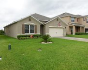 3669 Maidencain Street, Clermont image