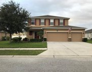 13533 Chesapeake Place, Spring Hill image