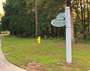 Lot 73 Lantana Circle, Georgetown image