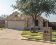 14157 Gold Seeker Way, Fort Worth image