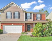 7632  Black Hawk Lane, Tega Cay image