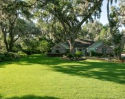 1076 HOLLY OAKS CT, St Johns image