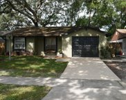 3309 Russett Drive, Tampa image