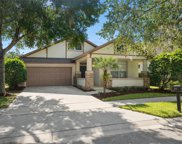 6755 Thornhill Circle, Windermere image