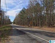 5899 Co Rd 12 Unit 1.47 Acres, Odenville image