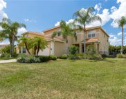 10154 Silver Maple  Court, Fort Myers image