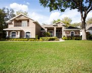 6224 Wild Orchid Drive, Lithia image