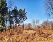 LOT 2 Oak Forest, Green Oak Twp image