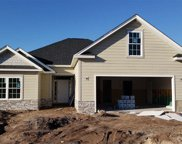 185 Shallowtail Ct., Little River image