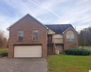 2112 River Bank Rd, Pigeon Forge image