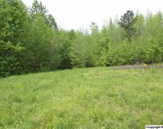 tract 13 Cook Road, Ardmore image