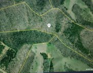 Lot 8 Kessel Hollow Rd, Parrottsville image