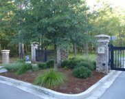 6247 Pepper Grass Trail, Ravenel image
